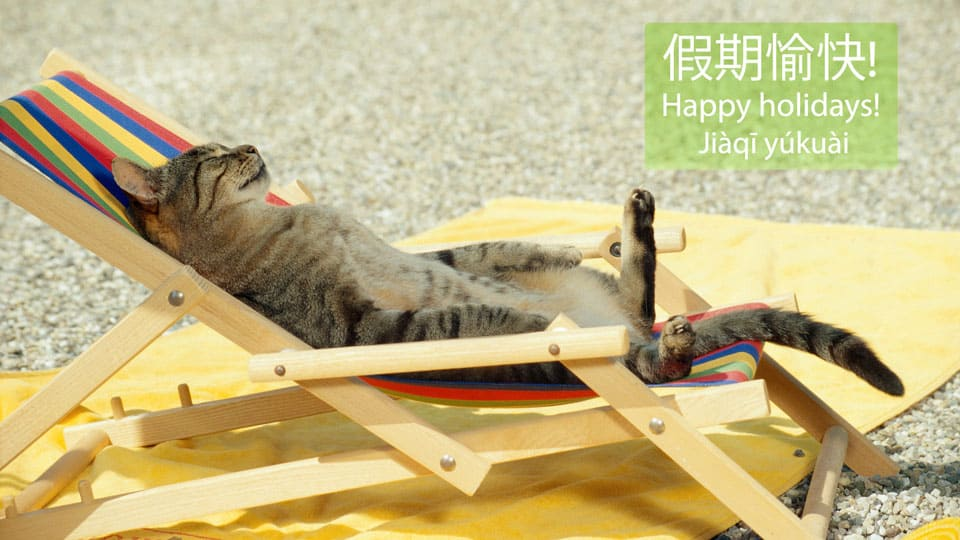 Cat_on_holiday.jpg
