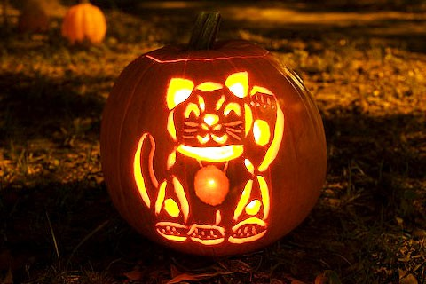 cat-pumpkin.jpg