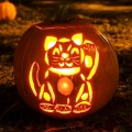 Lucky cat Jack o Lantern for Halloween