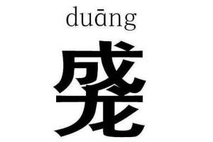 Duang or Jackie Chan?