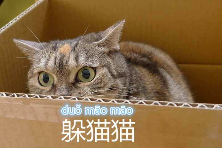 Hide and seek in Chinese has very much to do with cats