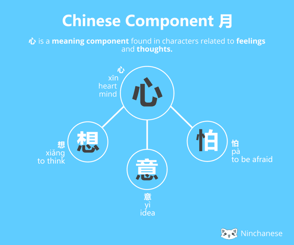Chinese character: the meaning component 心 heart