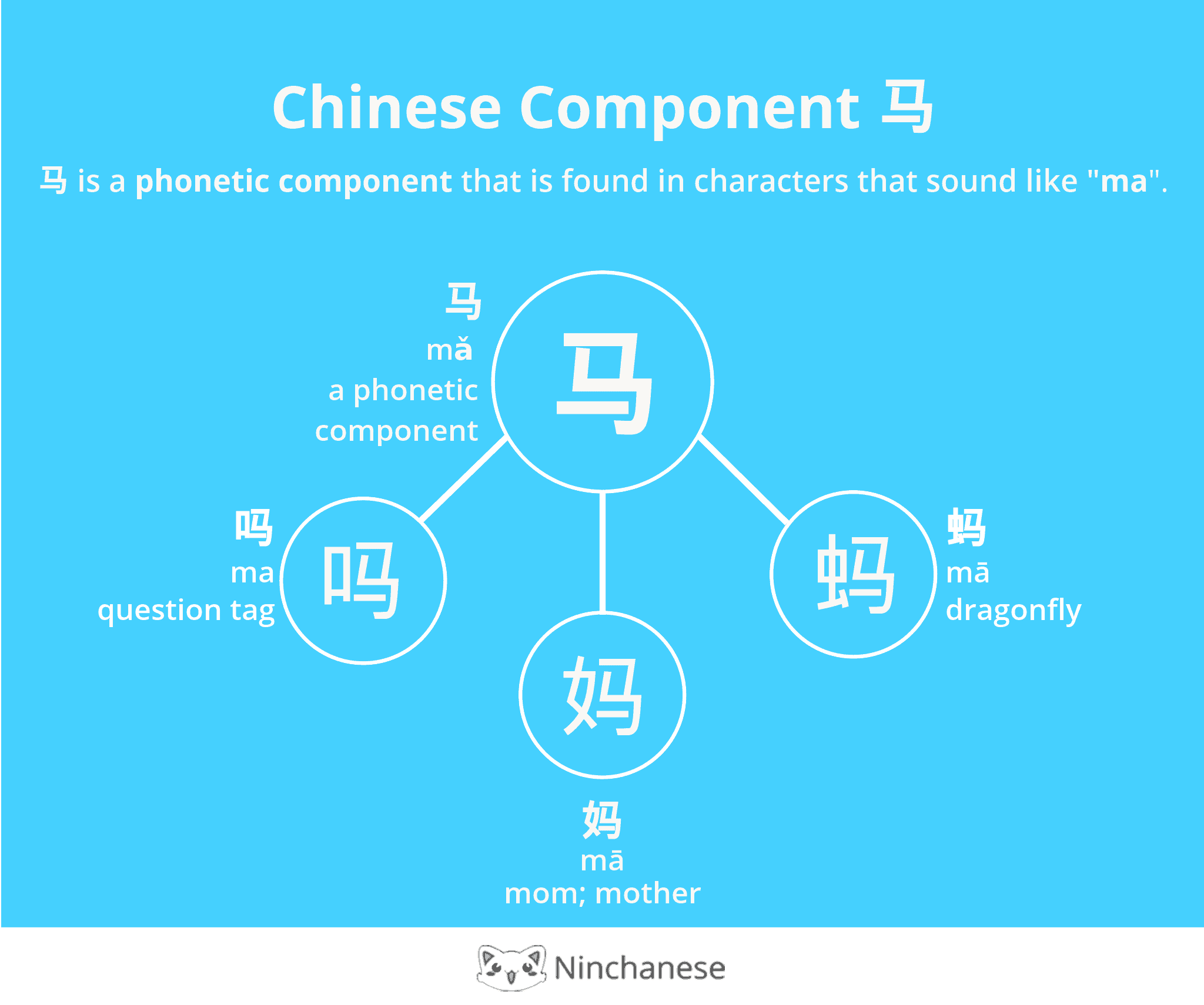 Everything you need to know about the Chinese character component 马. Right-click to save it!