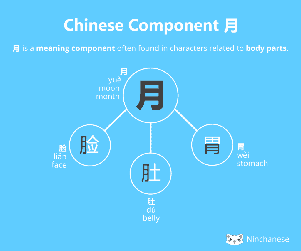 Everything you need to know about the Chinese character component 火 fire in an easily downloadable and sharable image