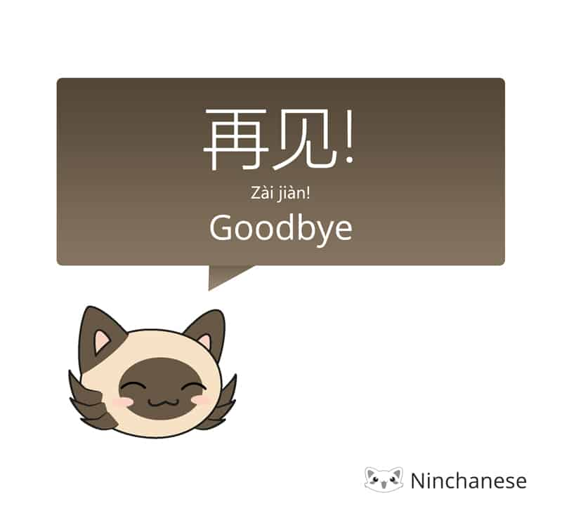 Cat says Goodbye in Mandarin: 再见