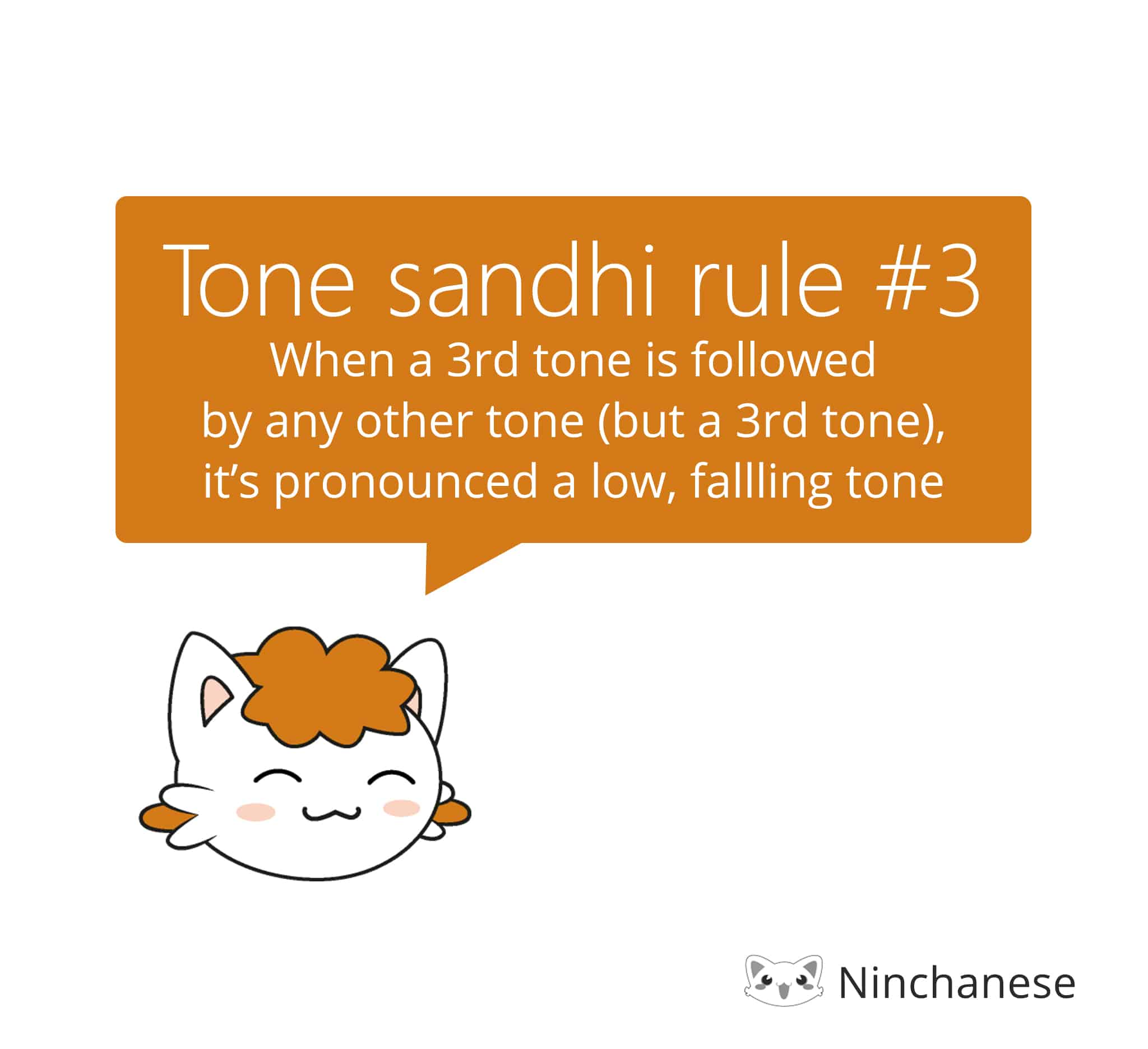 Tone sandhi rules for the third tone in Mandarin