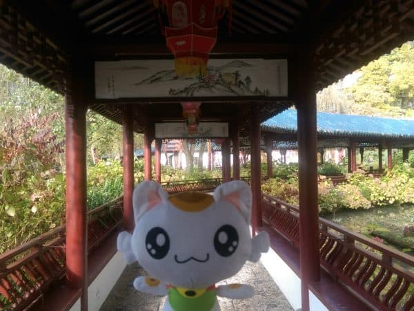 Nincha in the Chinese walkway at Pairi Daiza